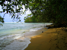 No-name beach in Gandoca Manzanillo Wildlife Refuge on the southern Caribbean