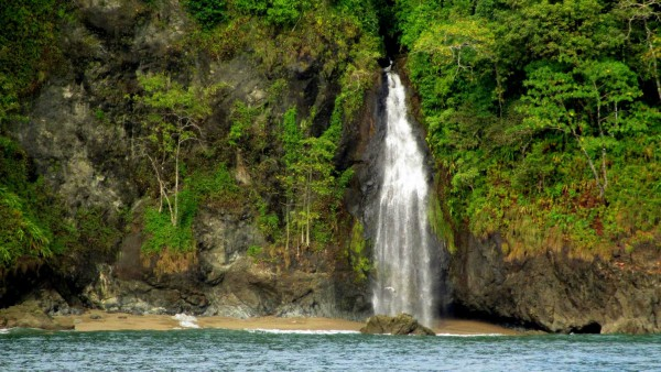 La Llorona waterfall comes straight out of the rainforest into the ocean