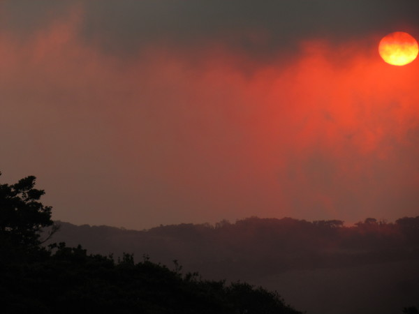 pink and orange sky over Monteverde