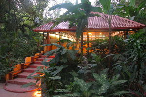 Nosara Yoga Institute Retreats and Teacher Training