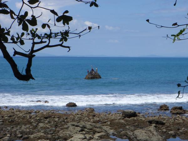 "Surfers waiting on ""the"" wave Pavones aka Playa Rio Claro"