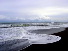 Playa Caletas is a protected turtle nesting beach