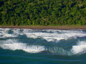 Playa Tortuguero northern Caribbean