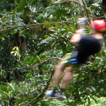 Ziplines are one of the most popular things to do in Costa Rica