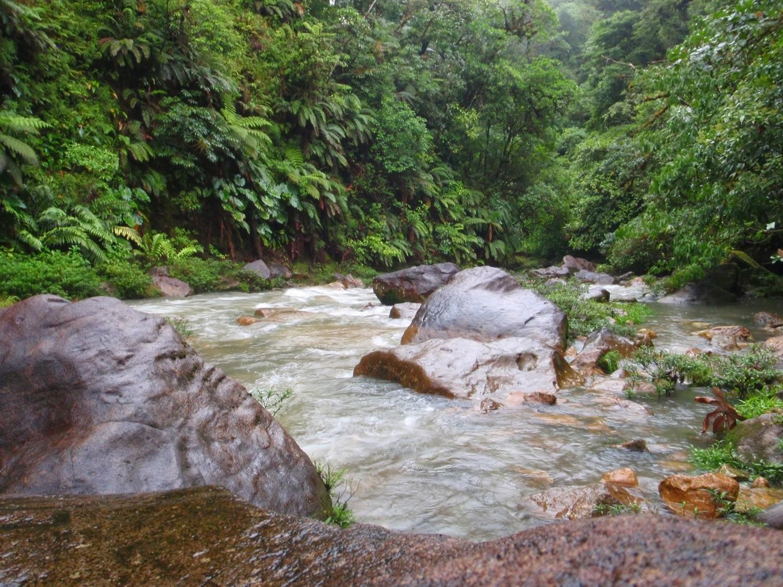 Hot Springs at the Rio Celeste