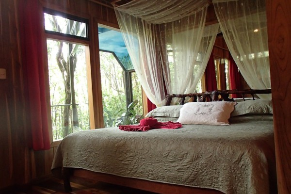 Hidden Canopy Treehouses Boutique Hotel